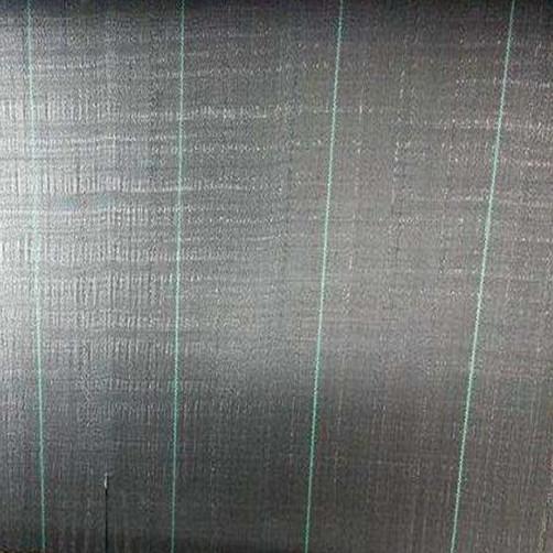 100cobertura del suelo negro gsm