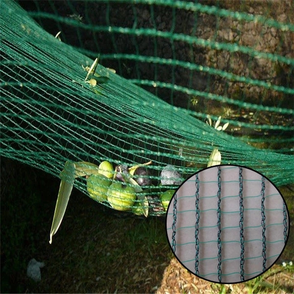 virgin hdpe falling fruit collect harvesting olive net