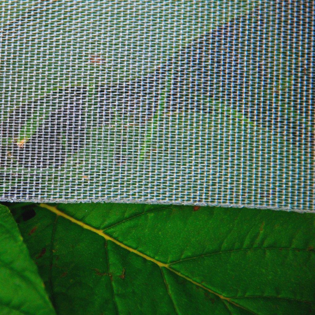 Overhead Crop Netting,Citrus Netting,Fruit Tree Netting