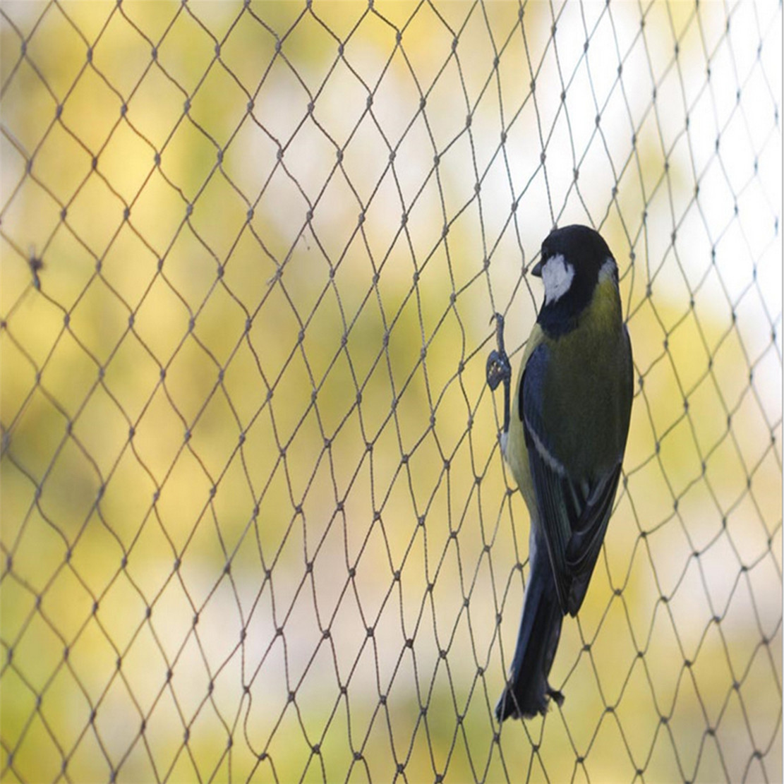 Insect Protection Nets/Insect Net/Anti Bird Net