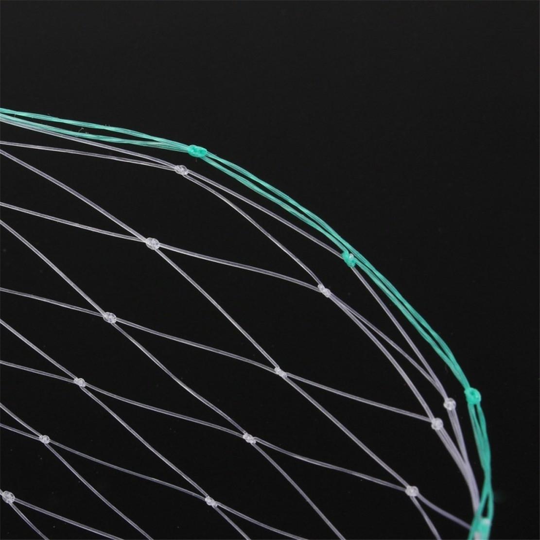 Transparente de plástico extruido Red / HDPE anti Bird Net