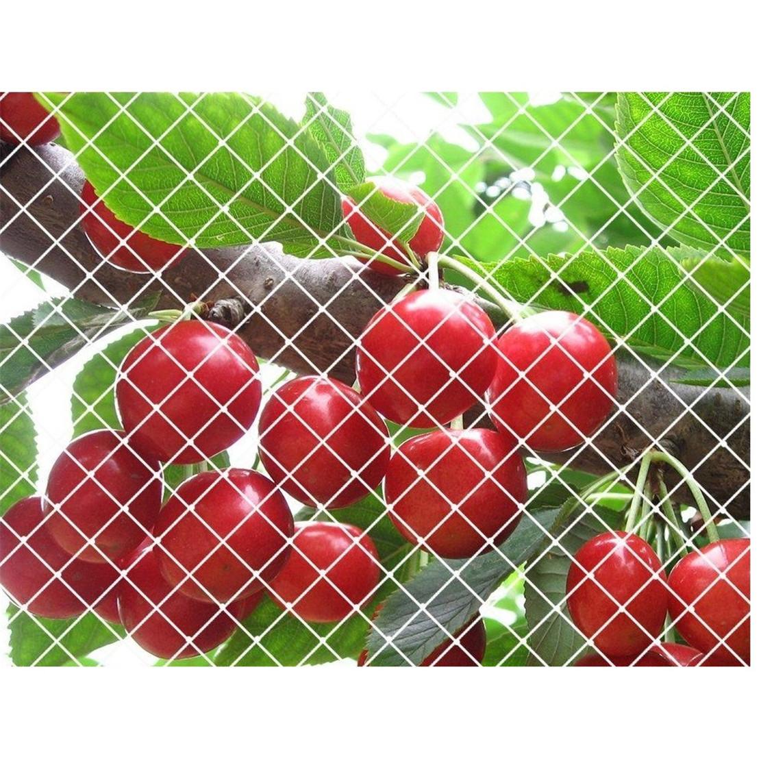 Agricultura anti Bird Red de Protección