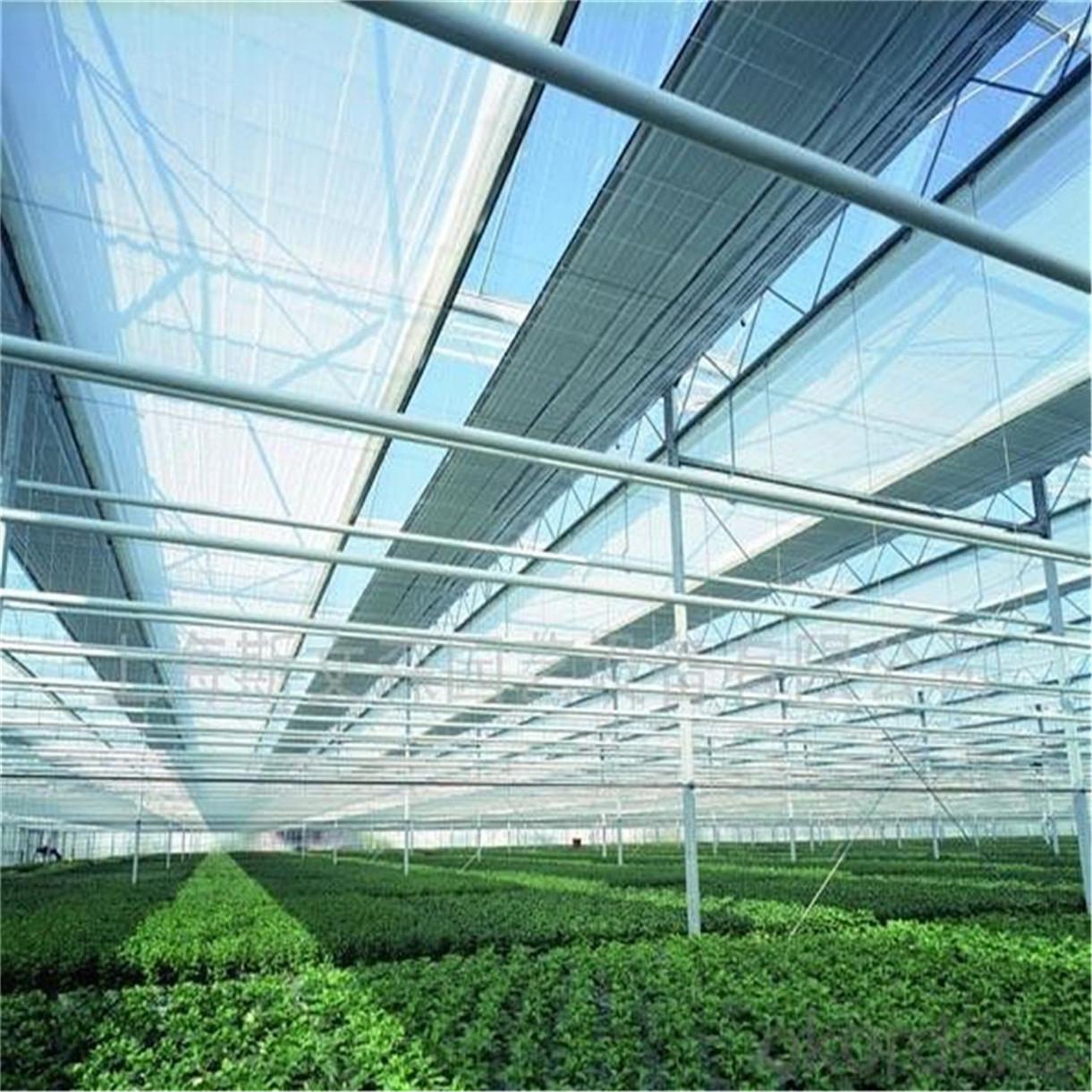 Mejor neto Shade plástico HDPE Jardín Green Sun & vela de la cortina