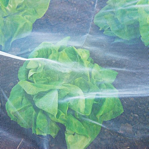 HDPE ANTI INSECT NETS 50 mesh for Agriculture / Gardenhouse