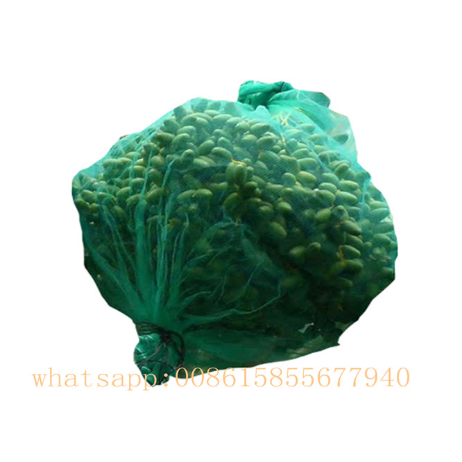 UV green monofilament net bag packing pe date mesh bags for date palm