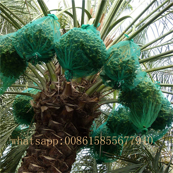 100% virgin polyethylene PE net bags for vegetables date palm packaging