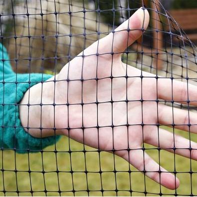 Redes de pássaros para redes de pragas de jardins e plantas